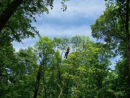 Hocking Peaks Adventure Park : Aerial Challenge Zipline