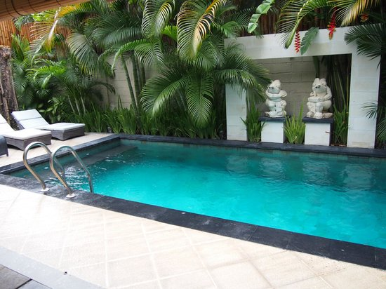 Villa Drupadi: Swimming Pool
