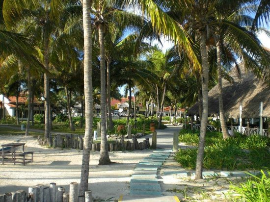 Sol Cayo Guillermo: one of the walkways to the beach