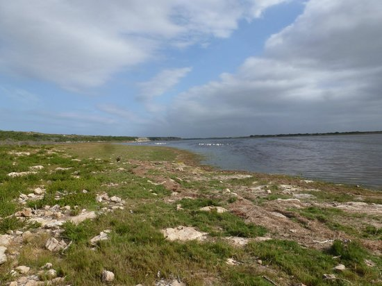 De Hoop Collection Nature Reserve: Beautiful Vlei trail