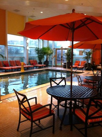 Sheraton Atlantic City Convention Center Hotel: clean and warm pool!