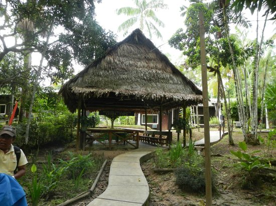 Ceiba Tops Lodge by Explorama: Entrance to Grounds and Hotel