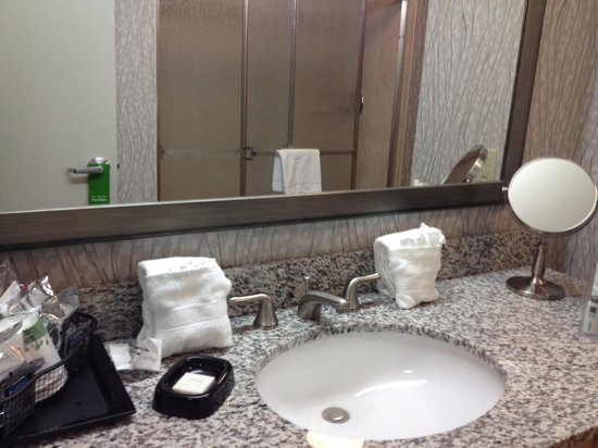 Hampton Inn & Suites by Hilton - Miami/Brickell-Downtown: Bad
