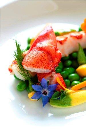 Winvian: Lobster Provencale