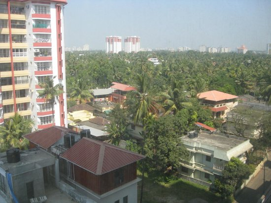 Holiday Inn Cochin: View of the coconut grove from the room in 4th floor