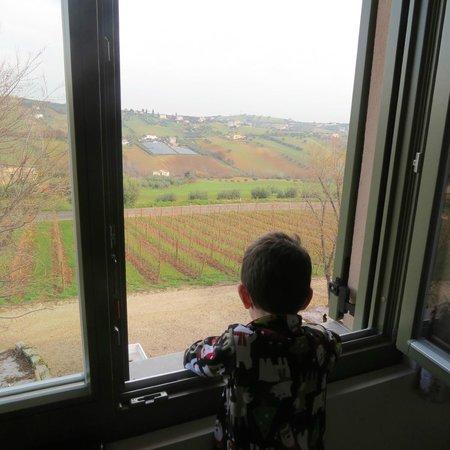L'Orso e l'Ape B&B: room with a view