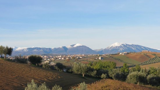 L'Orso e l'Ape B&B: stunning views from the property!
