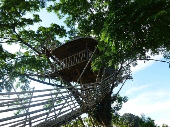 Mawlynnong Waterfall: the skyview tree house