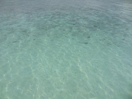 Adaaran Club Rannalhi: Clearest water
