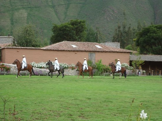 Sol y Luna - Relais & Chateaux: show de caballos de paso frente al comedor