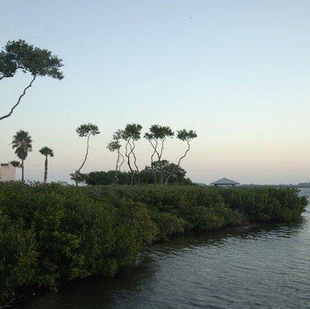 Tradewinds Beach Resort: Land