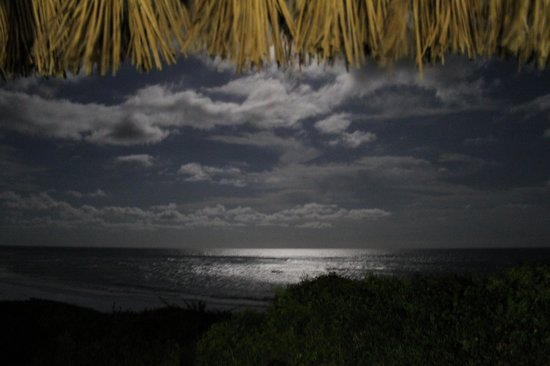 Bonito Bay: View of the fulll moon from our casa balcony...