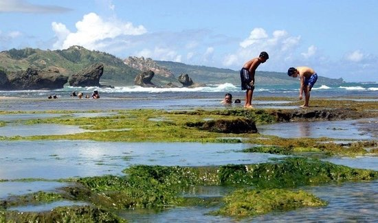 Round House Inn: The tidal pools at Bathsheba beach