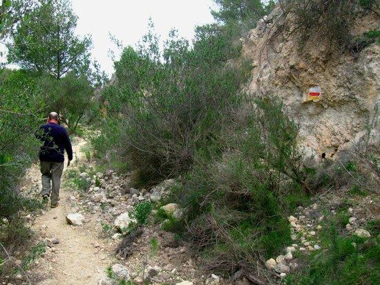 Hospederia Bajo el Cejo: walk