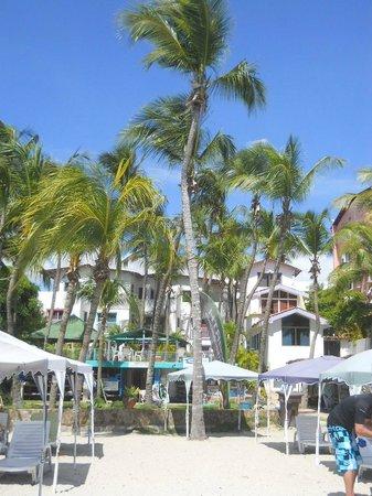 Jump N' Jibe: Viste desde la playa