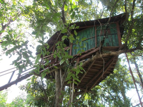 Dandeli, India: Jungle Camp Resort