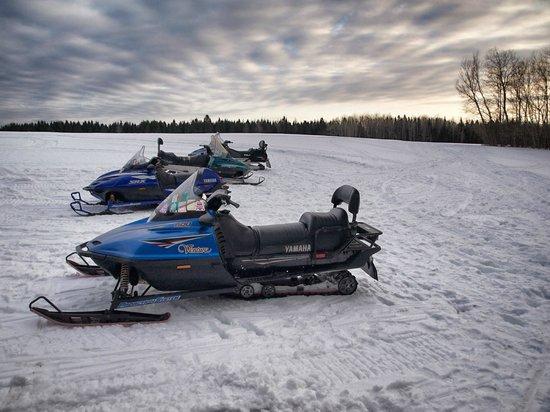 Shamrock Suites : Snowmobile