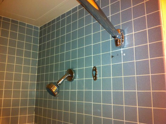 Georgian Court Hotel: Basic Shower