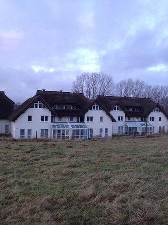 Strandhaus Lobbe: Strandhaus Rückseite