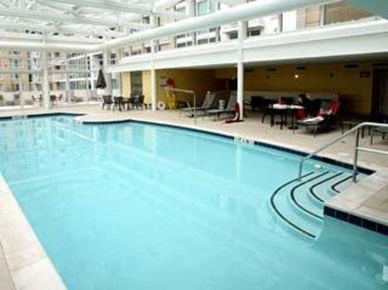 Executive Apartments: POOL
