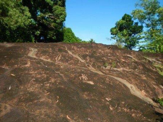 Pohnpei, Föderierte Staaten von Mikronesien: Basalt flow with petroglyphs