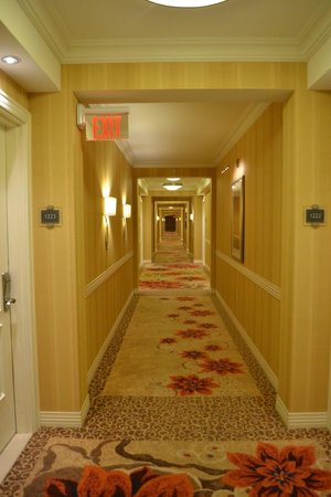 Waldorf Astoria Orlando: Pasillos