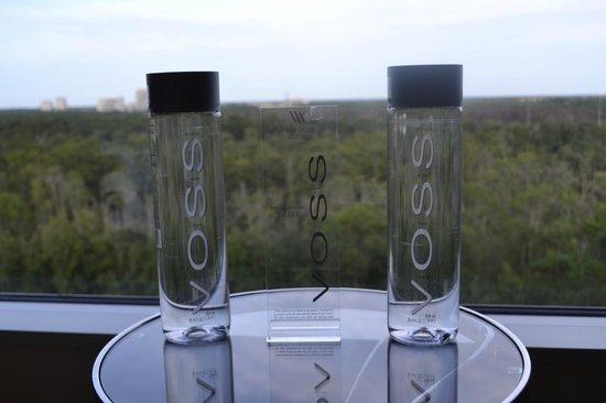 Waldorf Astoria Orlando: Hacia el frente
