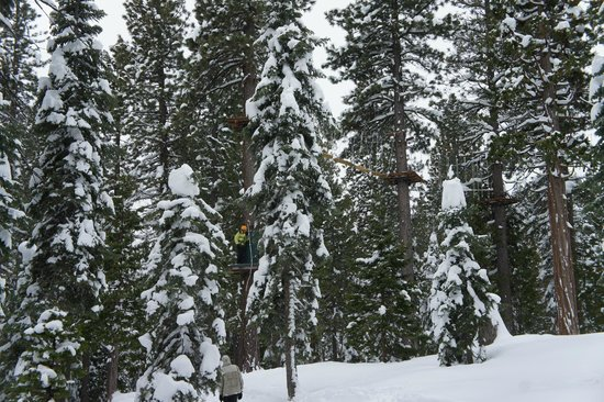 Tahoe Treetop Adventure Parks: rope course