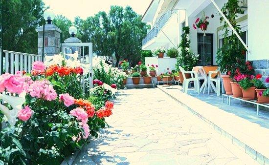 Diamanti Studios: Garden