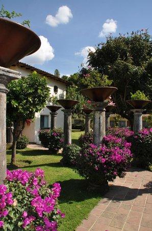 Casa Bugambilia: Garden area