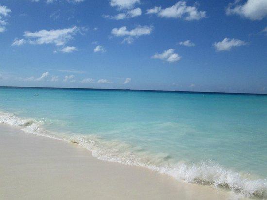 Divi Aruba All Inclusive: the beautiful beach