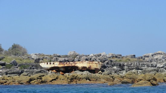 Jervis Bay Wild Cruises: A shipwreck