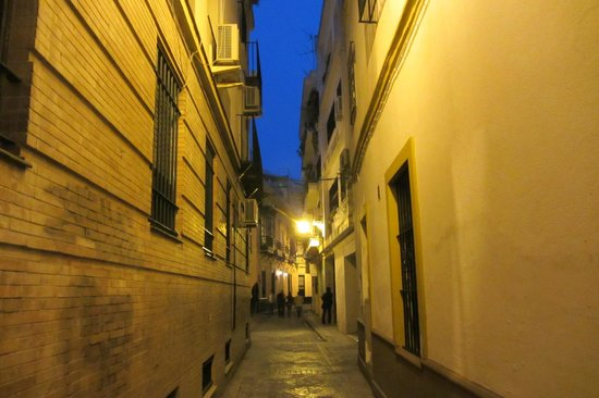 Bed & Breakfast Naranjo: street leading up to the hotel