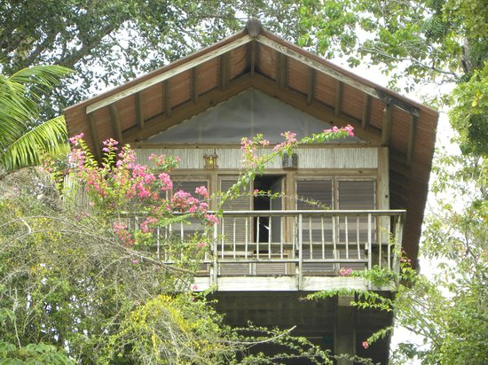Hacienda del Mar: One of the cabins that face beach as seen from beach