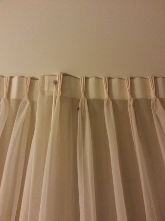 Fairfield Inn & Suites Baltimore BWI Airport: Beetle on Drapes