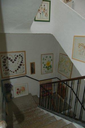 Les Asphodèles : The central staircase hung