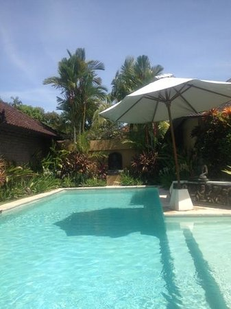 Dyana Villas: The pool at our Villa