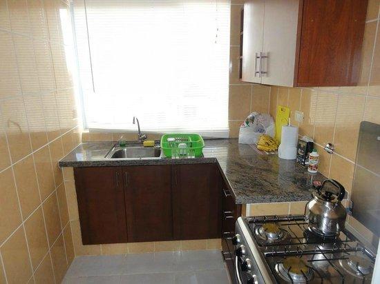Aparthotel Premium Suites Santa Cruz : cozinha