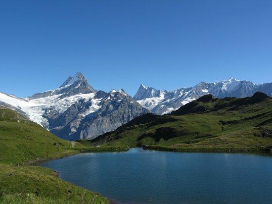 Bachalpsee Lake : Bachalpsee