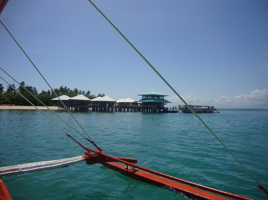Dos Palmas Island Resort & Spa: pier
