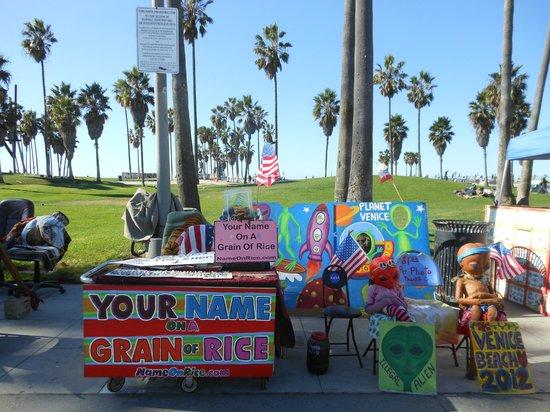 VIP Tours of California: Venice Beach.