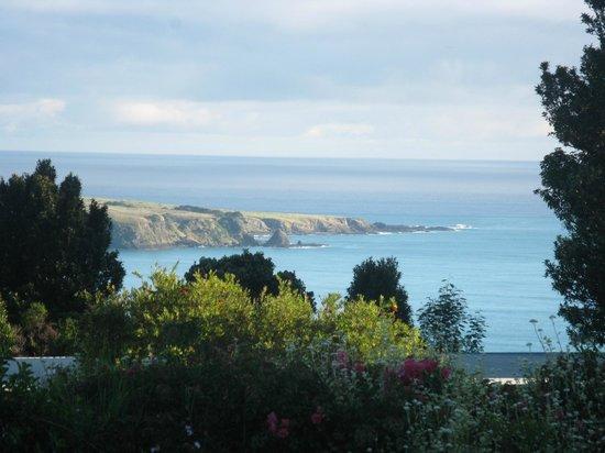 Hicks Bay Motel Lodge: An afternoon vista