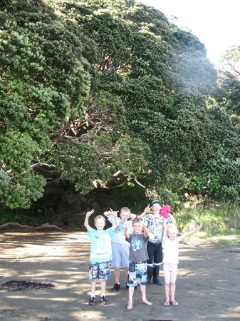 Hicks Bay Motel Lodge: Conquered the cliff walk - a jubilent bunch of happy kids