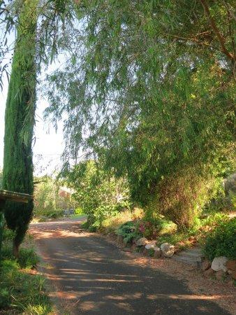 Margaret River Guest House: Entrance - Driveway