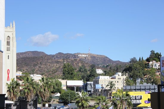 VIP Tours of California: The view of the Hollywood sign from our stop.