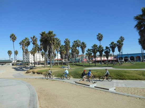 VIP Tours of California: Venice Beach