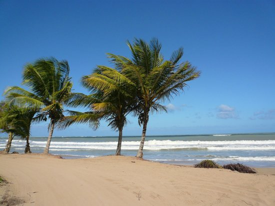 The St. Regis Bahia Beach Resort: beach