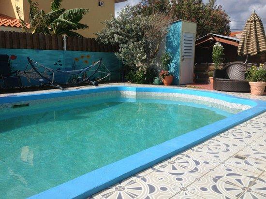 Villa Sunflower: Preciosa piscina, no tuve oportunidad de disfrutarla