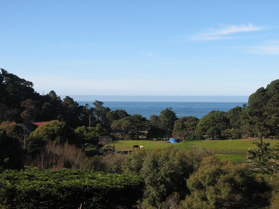 Stanford Inn by the Sea: The view from room 217