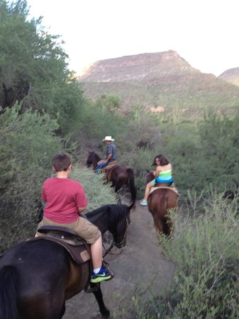 Western Destinations Canyon Creek Ranch - Tours : 1.5 hour horseback ride